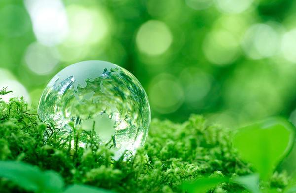 地球と人の未来のためにSHINDOが取り組むサステイナブル。